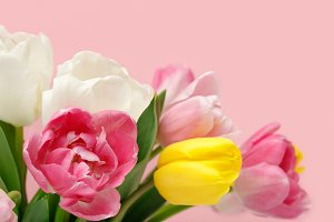 Bouquet of colorful spring tulips is