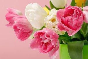 Tender blooming tulips in vase on pi