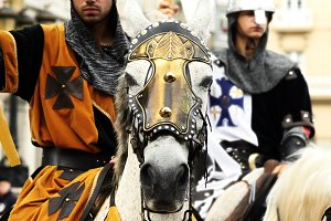 armored horse in medieval fair