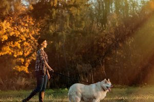 girl walks with husky