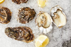 Fresh oysters and lemons served on i