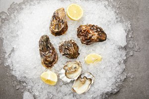 Cooled oysters served with lemons on