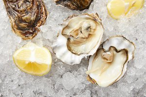 Fresh oysters and lemon slices on ic