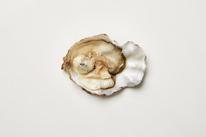 Open fresh oyster clam isolated on w