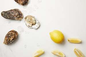 Fresh oysters with lemons on white t