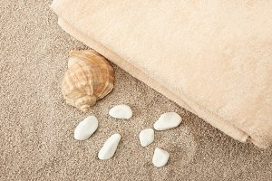 top view of seashell, sea stones and