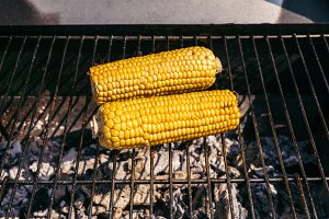 Corn cobs grilled for outdoors barbe
