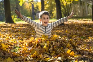 Happy little boy in the autumn park.