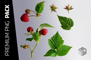 6 RASPBERRY PNG IMAGES
