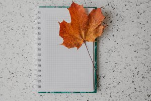 Notepad on springs with a maple leaf