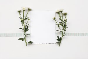 Paper frame with flower on white