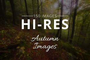 Autumn Photo Bundle - 150 Images