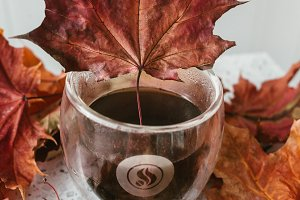 Cup of coffee with Maple leaves on