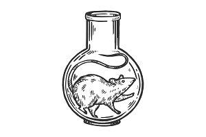 Rat animal in laboratory flask