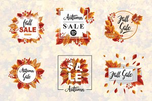 6 Autumn Sale Fall Leaves Promotion