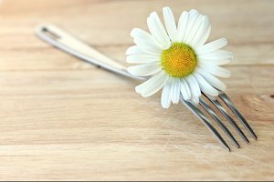 fork & daisy