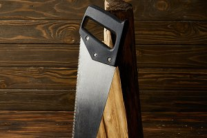 closeup view of handsaw and log on w