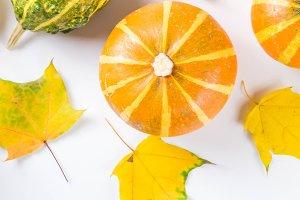 Autumn pumpkins layout