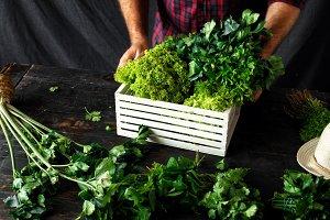 Farmer with freshly herbs