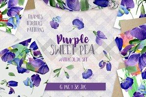 Purple sweet pea PNG watercolor set