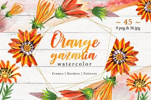 Cool orange gazania PNG watercolor
