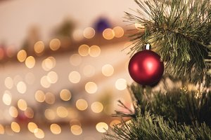 cropped image of christmas tree with