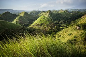 Chocolate Hills in the Bohol