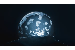 Christmas Snow Globe Snowflake