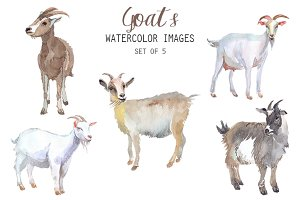 Watercolor Goats Clipart