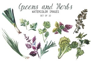 Watercolor Greens & Herbs Clipart