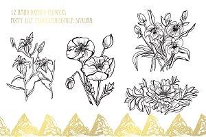 12 Hand Drawn Flowers Set