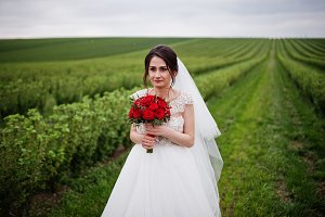 Portrait of a gentle beautiful bride
