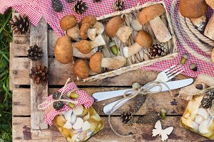 White mushrooms, pine cones and deco