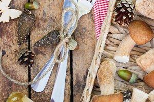 Raw white mushrooms, pine cones with