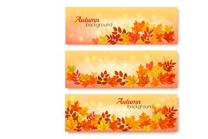 Three Autumn Sale Banners