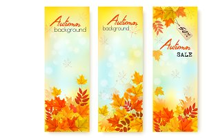 Three Autumn Sale Banners. Vector
