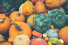 Symbol of Halloween and Harvesting.