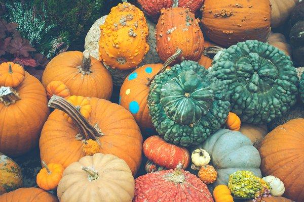 Stock Photos: Namphon2u - Symbol of Halloween and Harvesting.