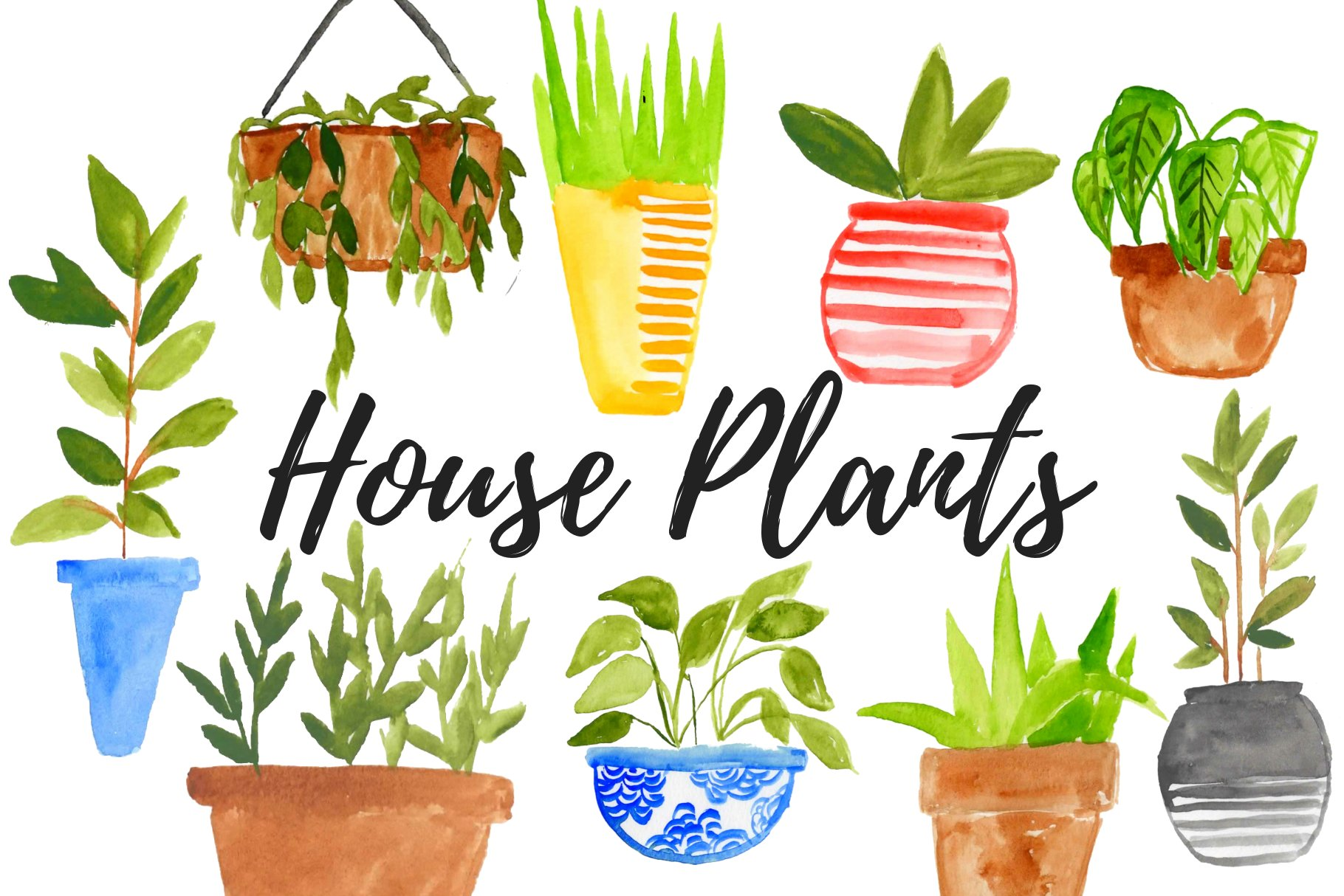 Collection of hand drawn indoor house plants - Download Free Vectors,  Clipart Graphics & Vector Art