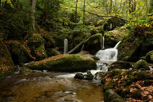 river waterfall in autumn forest