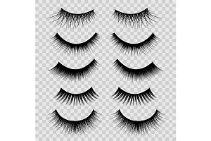 3d Feminine Black Lashes Set. Vector