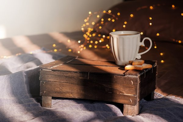 Holiday Stock Photos: AlinaKho - Holiday morning