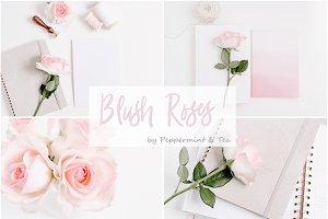 Blush Roses Bundle