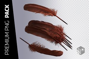 3 FEATHER PNG IMAGES