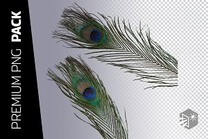 2 PEACOCK FEATHER PNG IMAGES