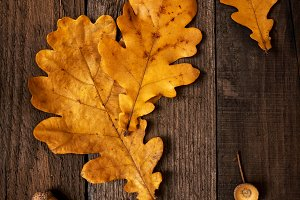 Yellow leaves over wooden background