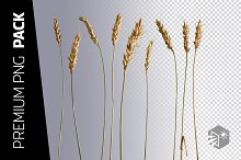 9 WHEAT PNG IMAGES