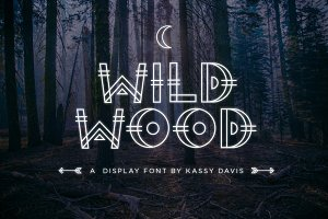Wild Wood Font + Extras