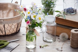 Daisies and forget-me-not flowers