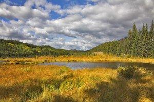 Charming small lake.
